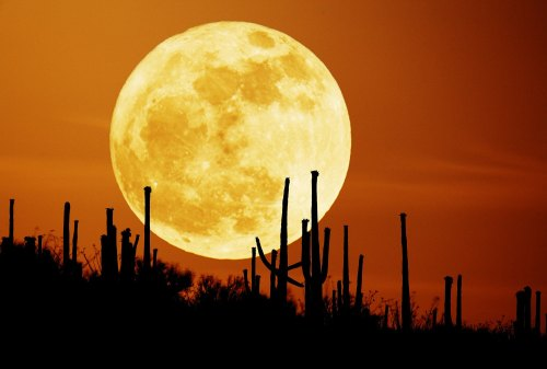 An Arizona Harvest Moon.