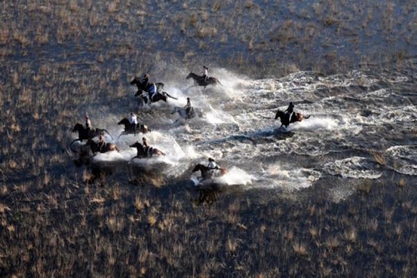 Race ya!  (Photo credit: African Horseback Safaris)