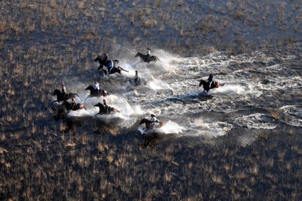 Race ya!  (Photo credit: African Horseback Safaris)